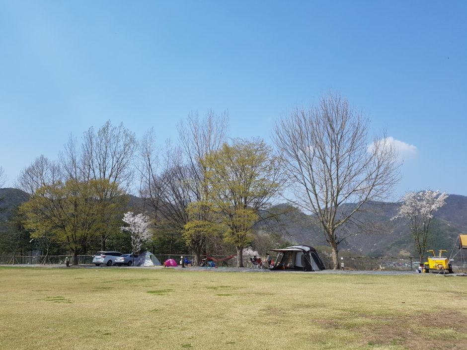제천 캠핑장 (4)
