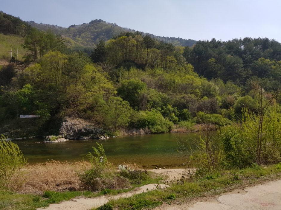 살둔마을 캠핑장 (1)