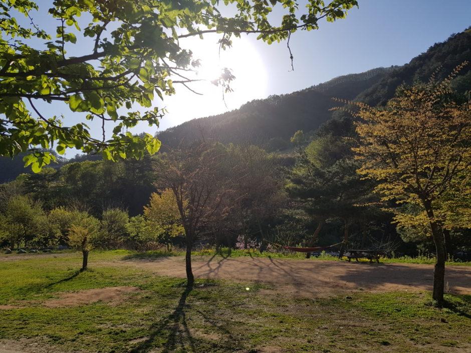 살둔마을 캠핑장 (46)