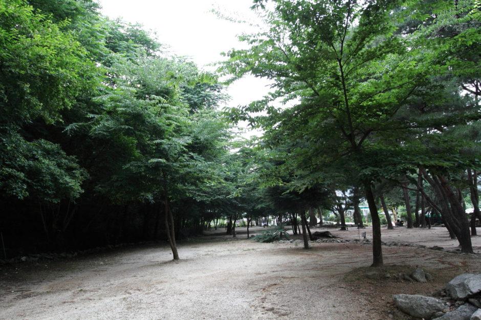 명지계곡 캠핑장 (9)