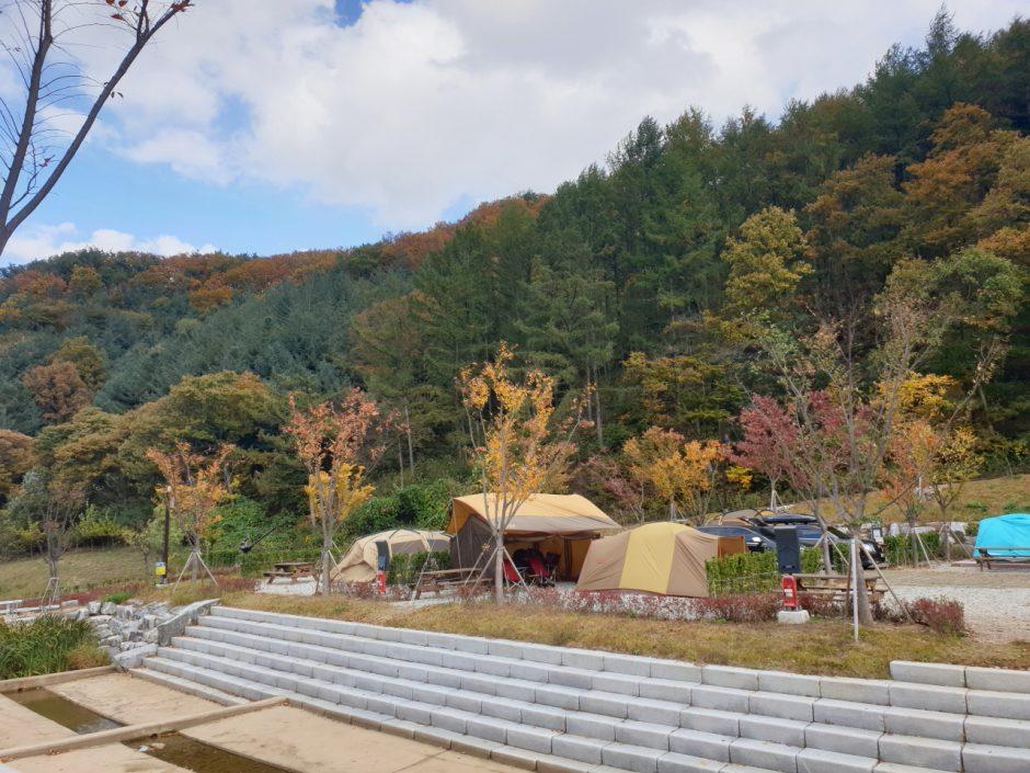 가을캠핑 (24)
