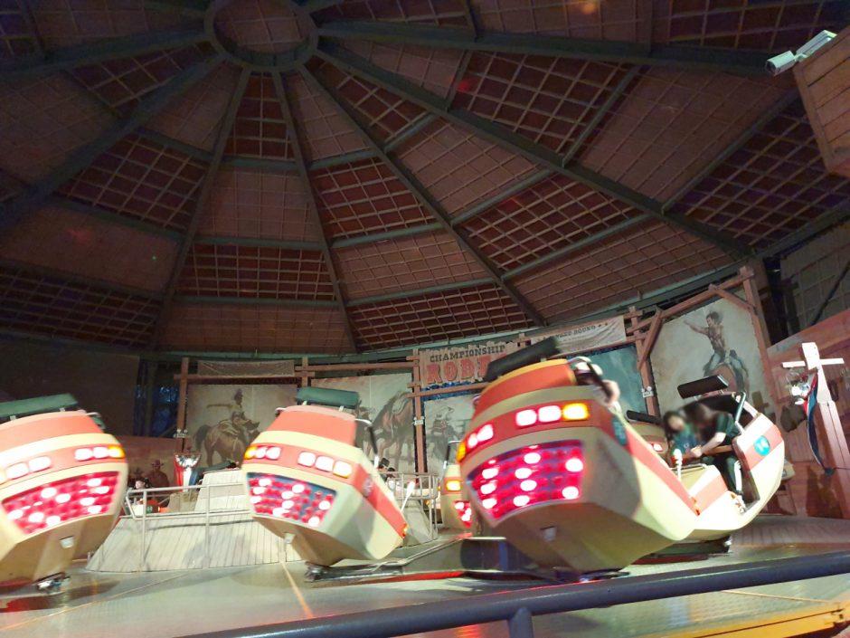 에버랜드 장미축제 (5)
