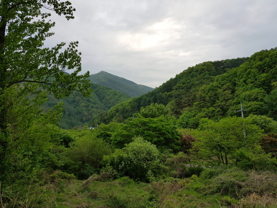 펜션 캠핑 (15)