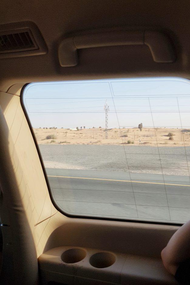 두바이 사막투어 (25)