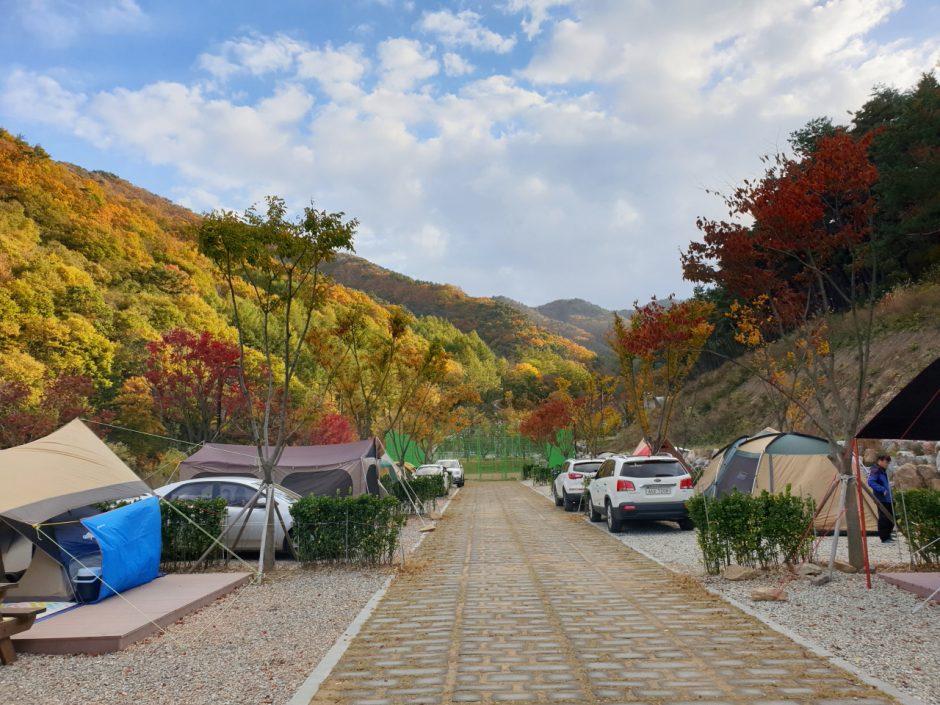 가을캠핑 (13)
